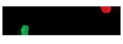 VIttorio Benzi Logo